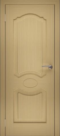 Дверь ШГ-2