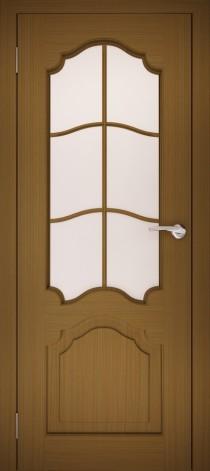 Дверь ШОР-1