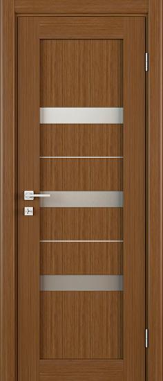 Дверь Д16
