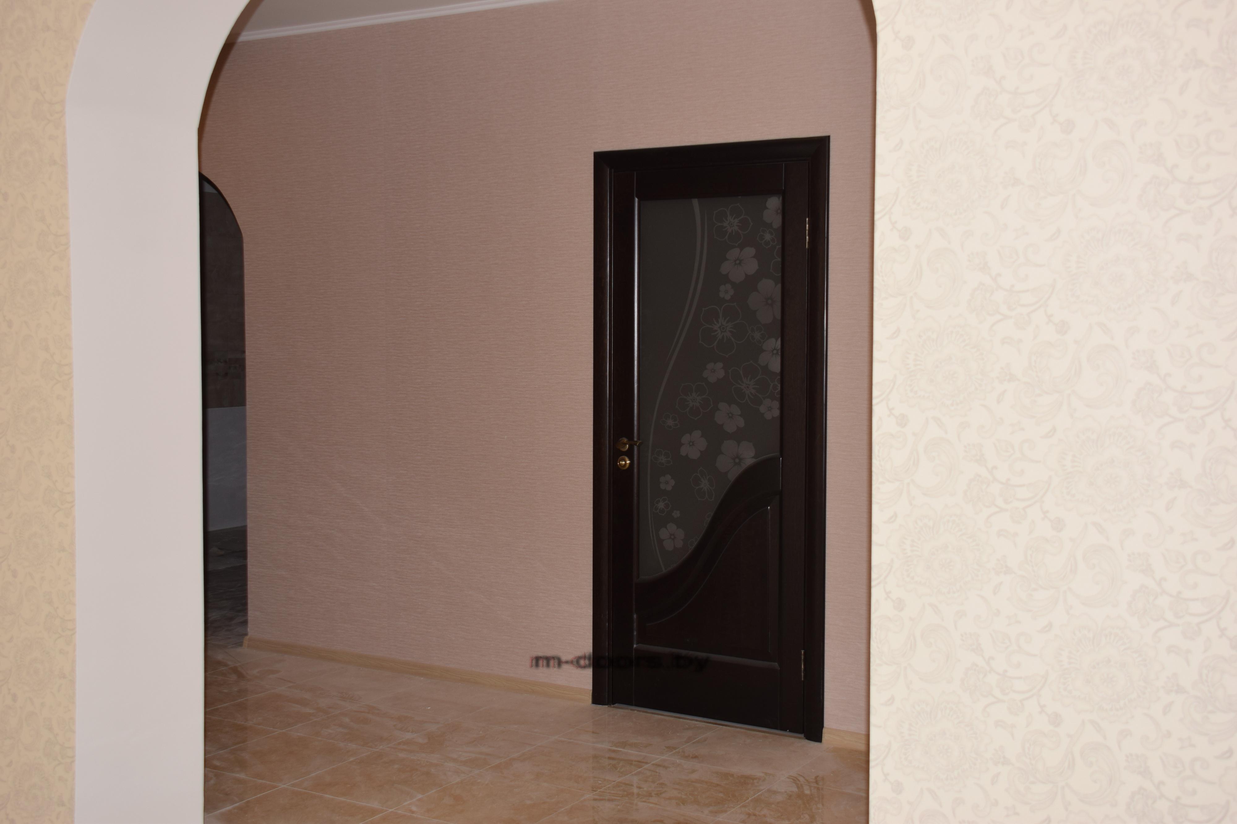 Дверь Камила ДО массив (С)