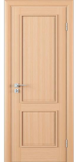 Дверь С1